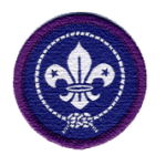 beavers-core-badges