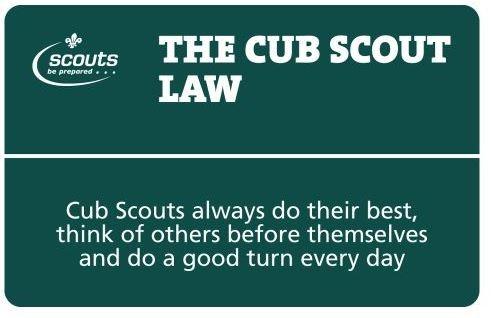 cub-law