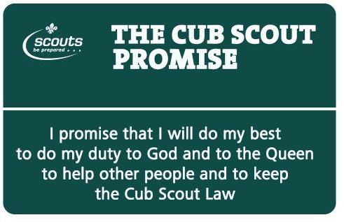 cub-promise